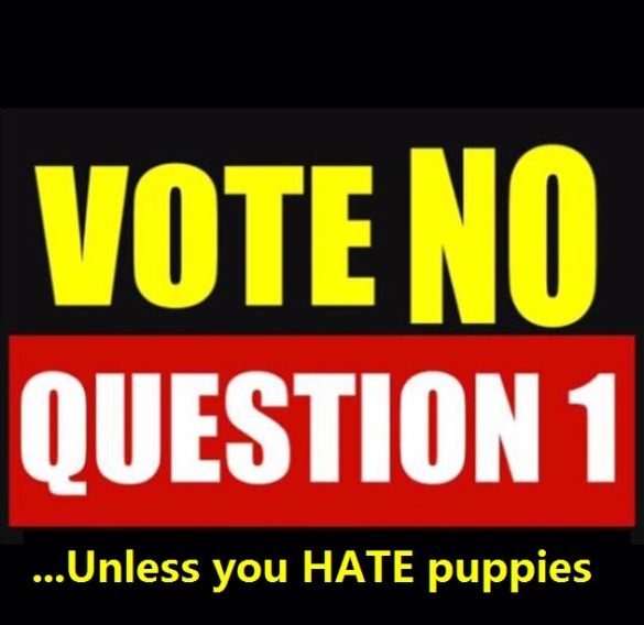 Vote No on 1